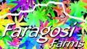 Faragosi Farms
